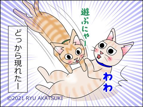 あんこ&麦STORY1446d