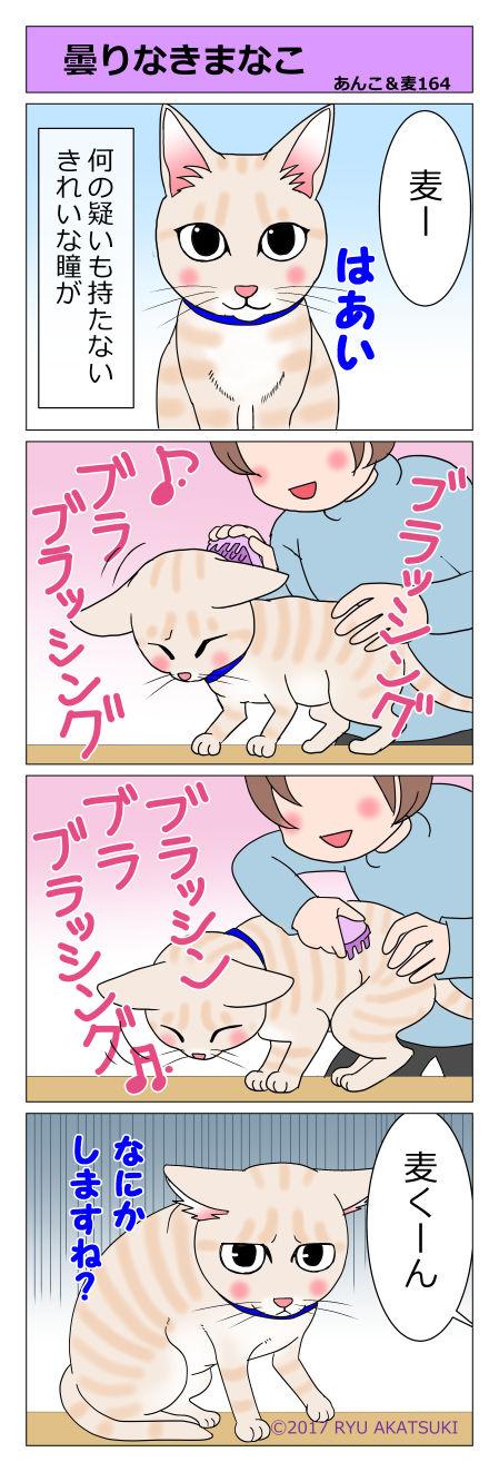 あんこ&麦STORY164