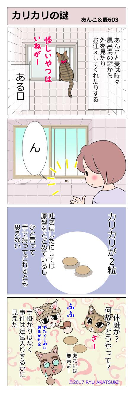 あんこ&麦STORY603