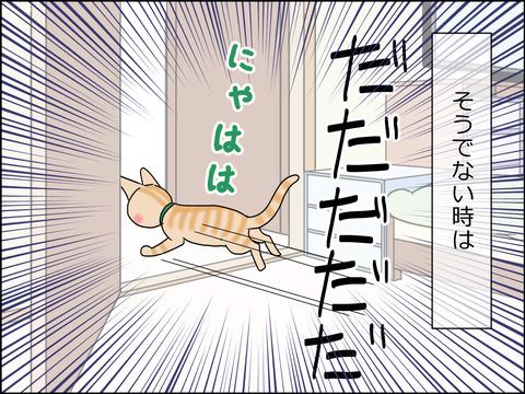あんこ&麦STORY1441b