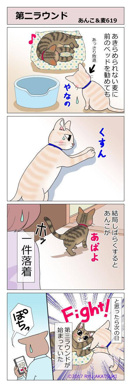 あんこ&麦STORY619
