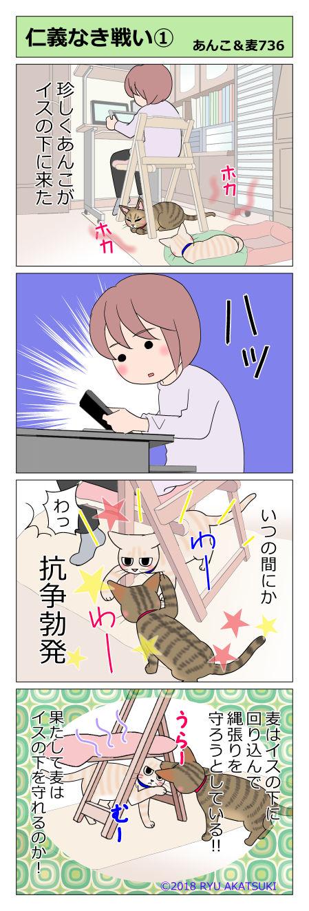あんこ&麦STORY736
