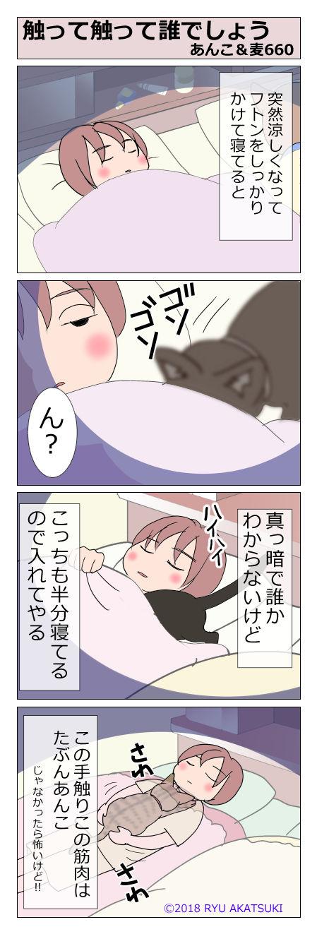 あんこ&麦STORY660
