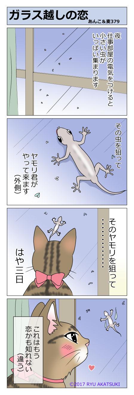 あんこ&麦STORY379