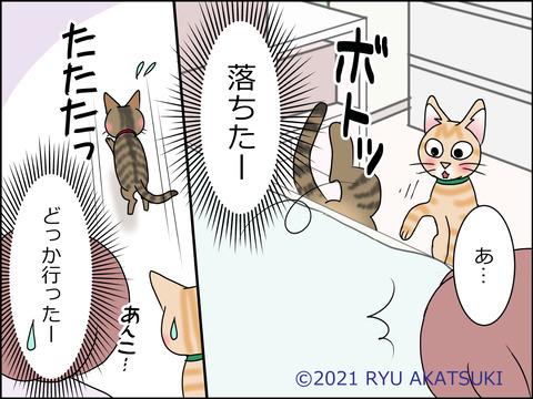 あんこ&麦STORY1445d