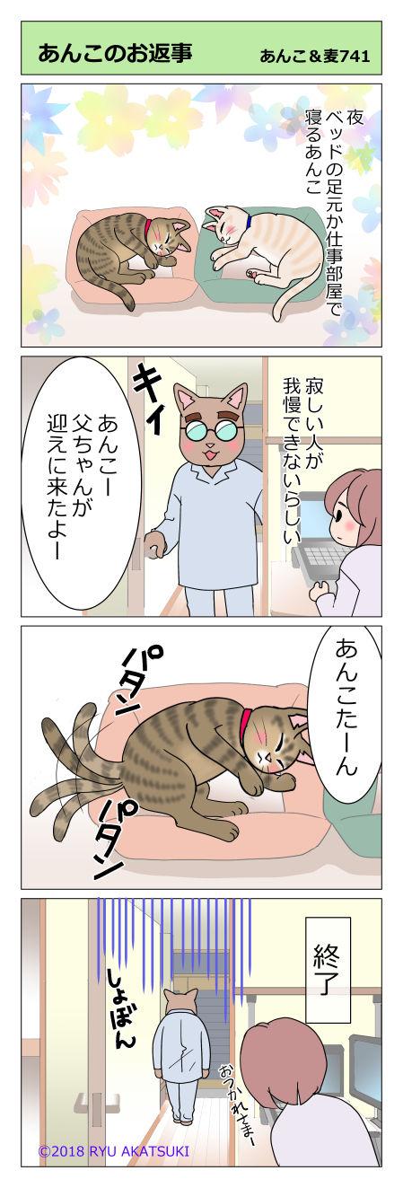 あんこ&麦STORY741