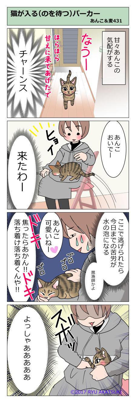 あんこ&麦STORY431