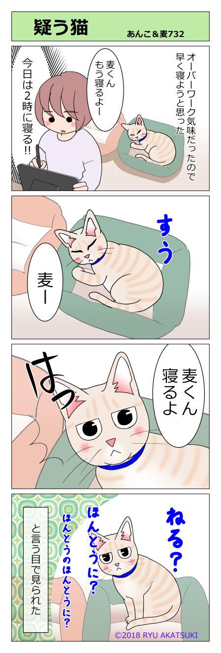 あんこ&麦STORY732