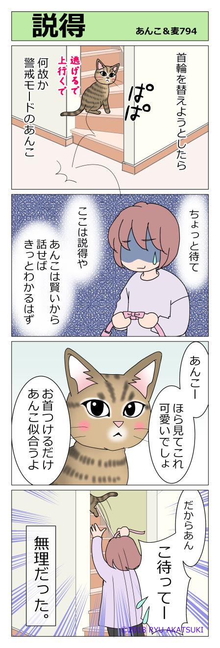 あんこ&麦STORY794