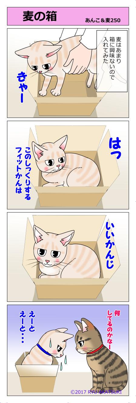 あんこ&麦STORY250