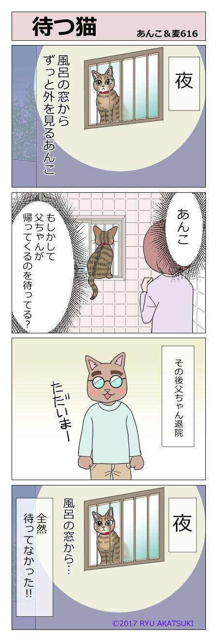 あんこ&麦STORY616