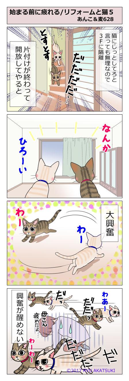 あんこ&麦STORY628