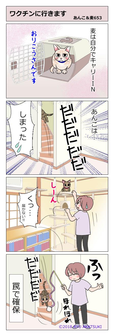 あんこ&麦STORY653