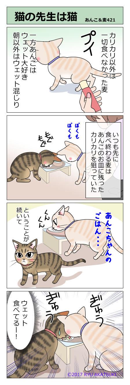 あんこ&麦STORY421