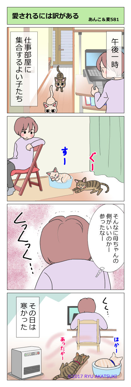 あんこ&麦STORY581