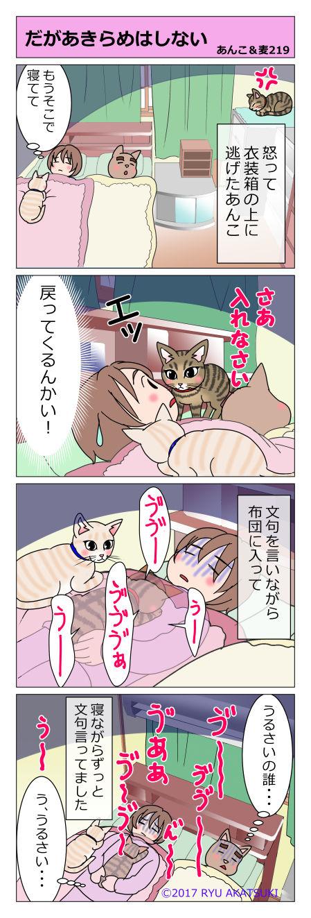あんこ&麦STORY219