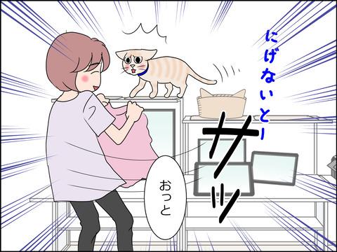 あんこ&麦STORY1437b