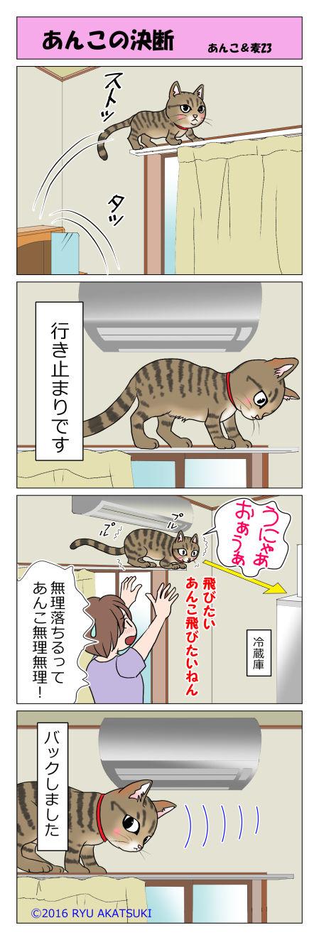 あんこ&麦STORY23