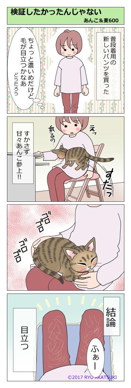 あんこ&麦STORY600