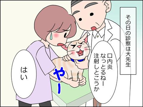 あんこ&麦STORY1450c