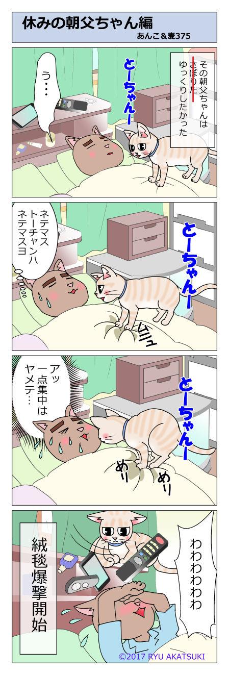 あんこ&麦STORY375