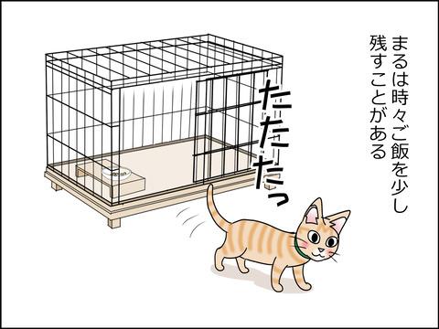 あんこ&麦STORY1449a