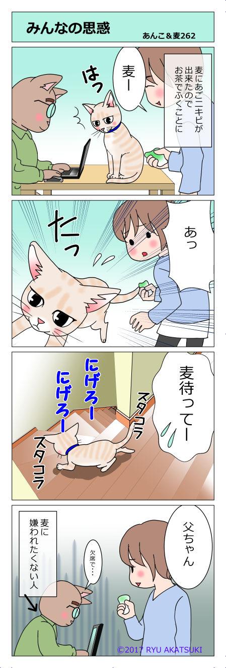 あんこ&麦STORY262
