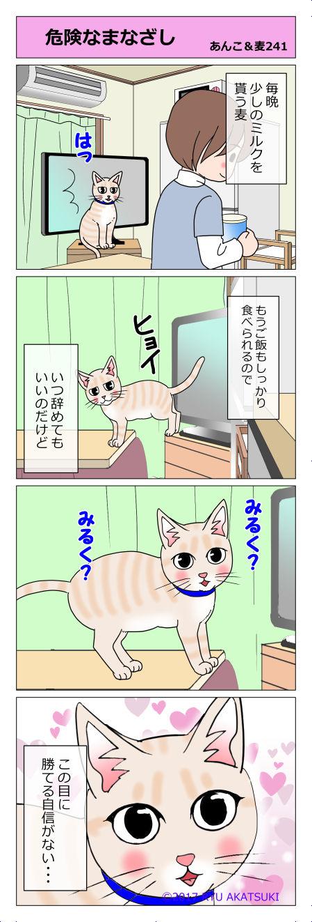 あんこ&麦STORY241