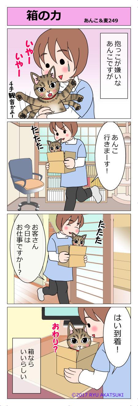 あんこ&麦STORY249