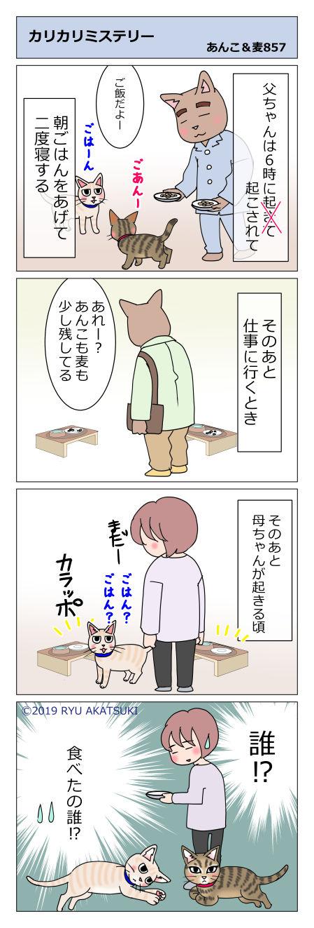 あんこ&麦STORY857