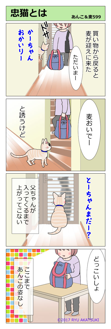 あんこ&麦STORY599