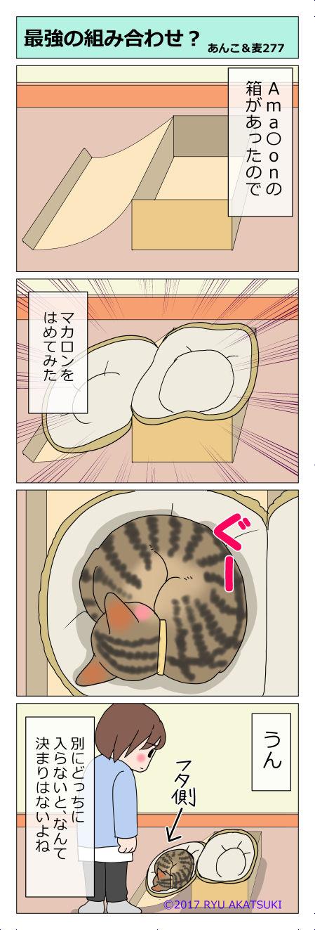 あんこ&麦STORY277