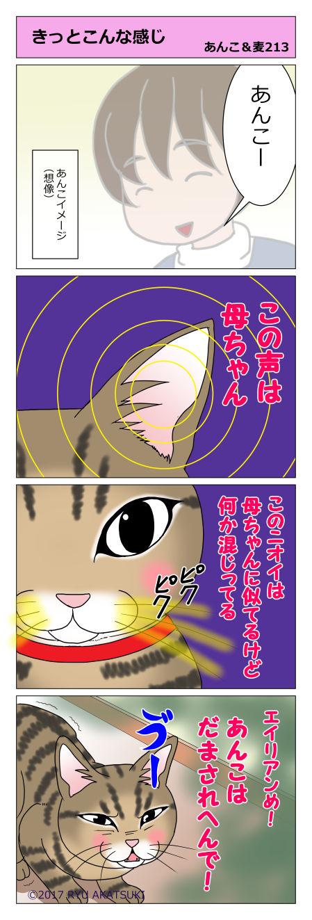 あんこ&麦STORY213