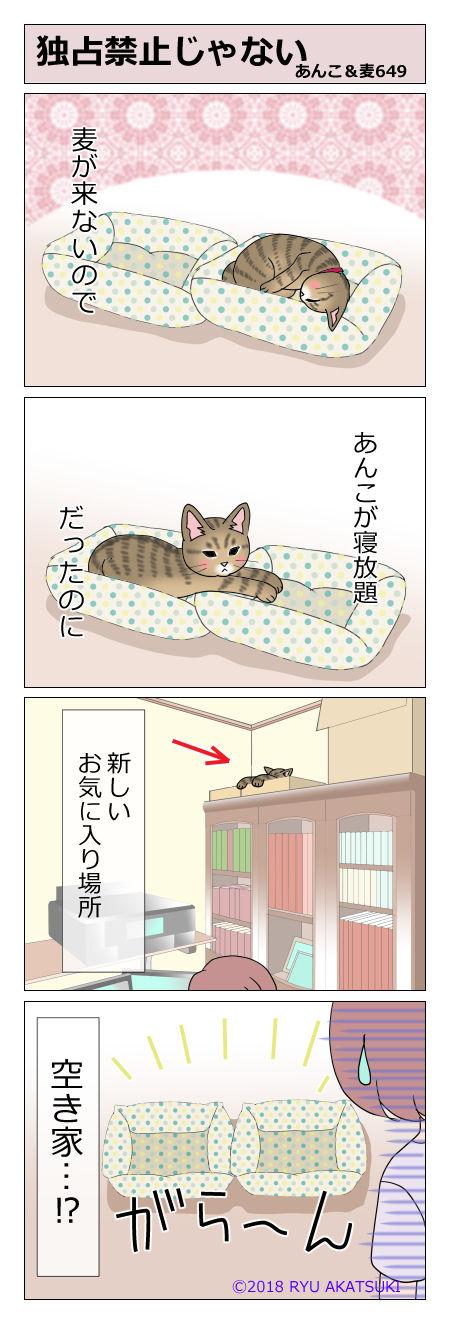 あんこ&麦STORY649