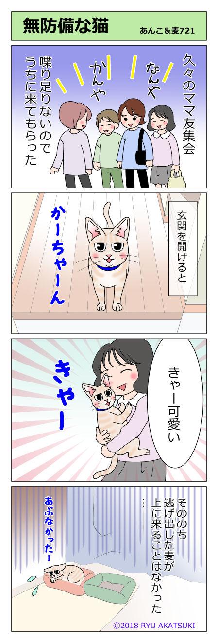 あんこ&麦STORY721
