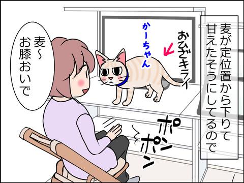 あんこ&麦STORY1462a