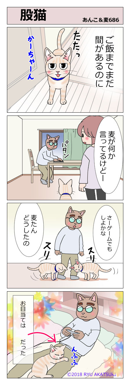 あんこ&麦STORY686