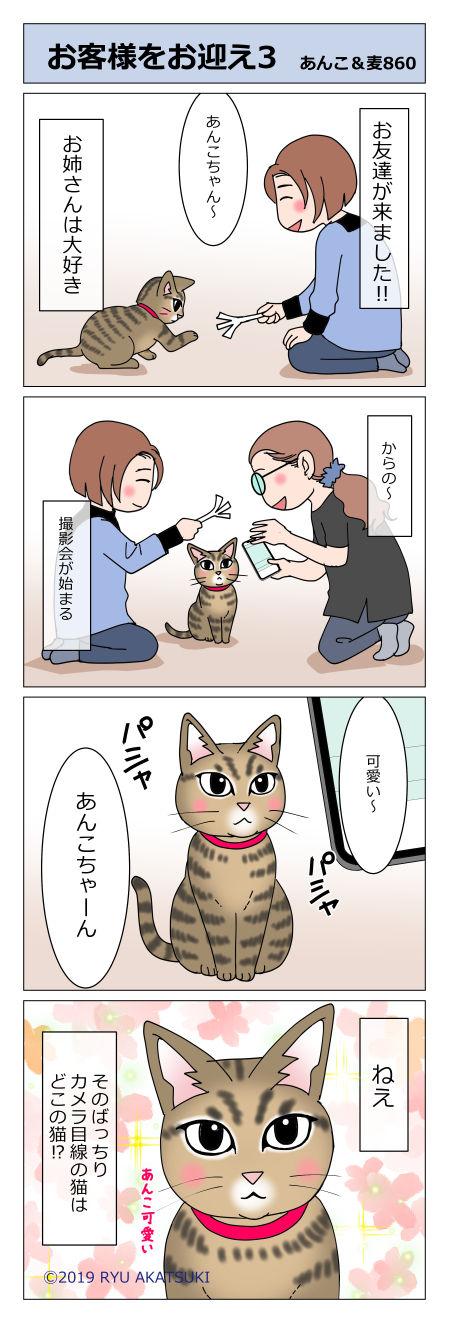 あんこ&麦STORY860