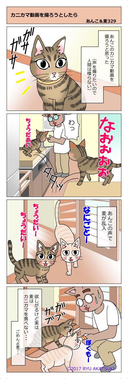 あんこ&麦STORY329
