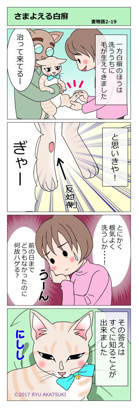 mugimono19