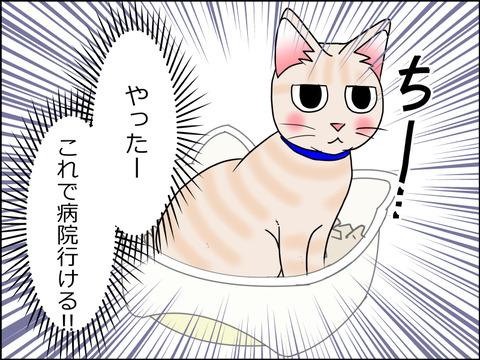 あんこ&麦kenko29c