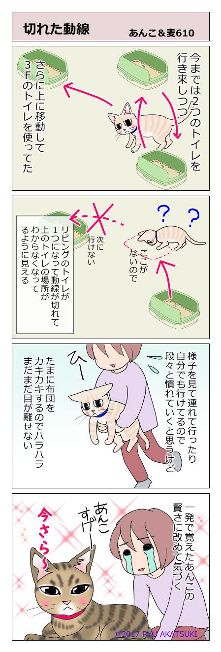 あんこ&麦STORY610