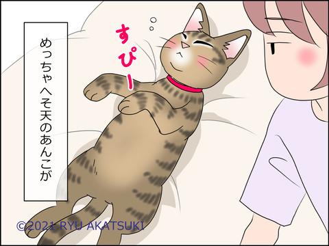 あんこ&麦STORY1434d