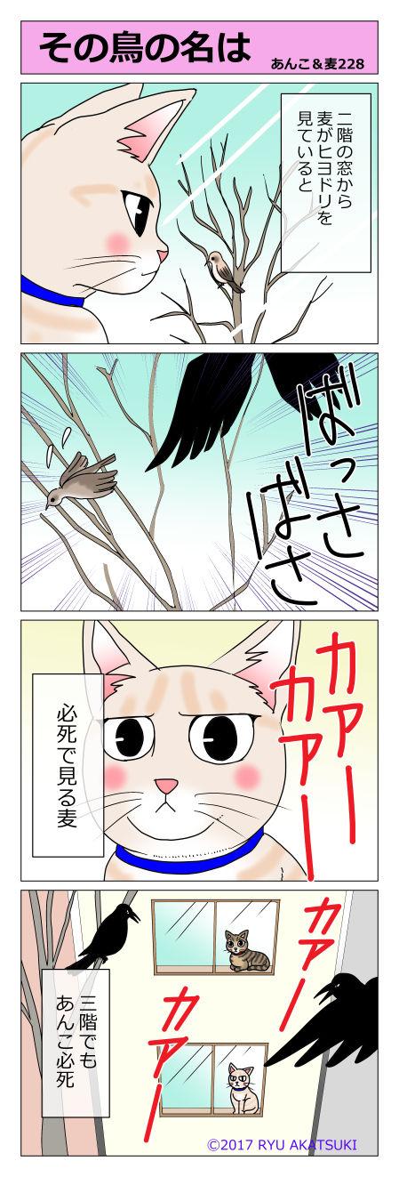 あんこ&麦STORY228