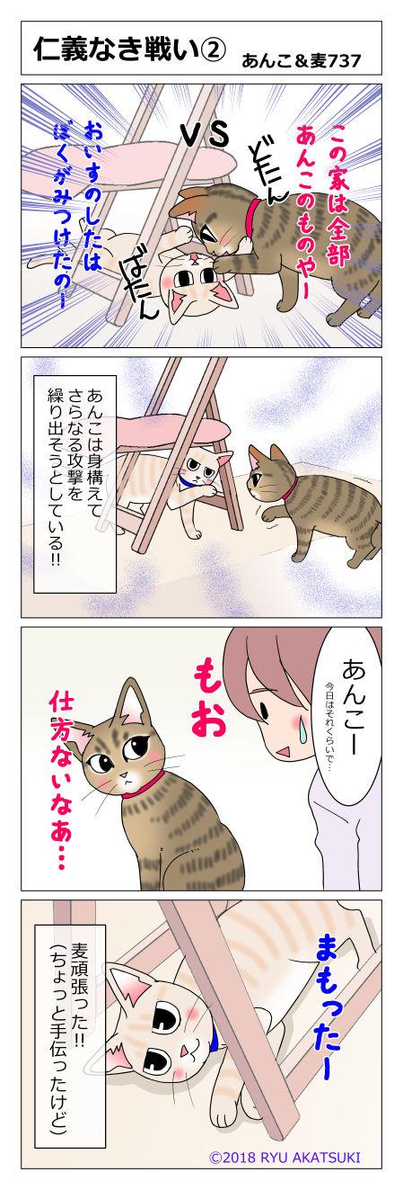 あんこ&麦STORY737