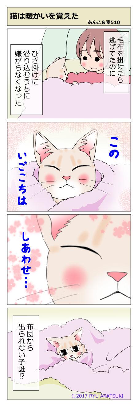 あんこ&麦STORY510