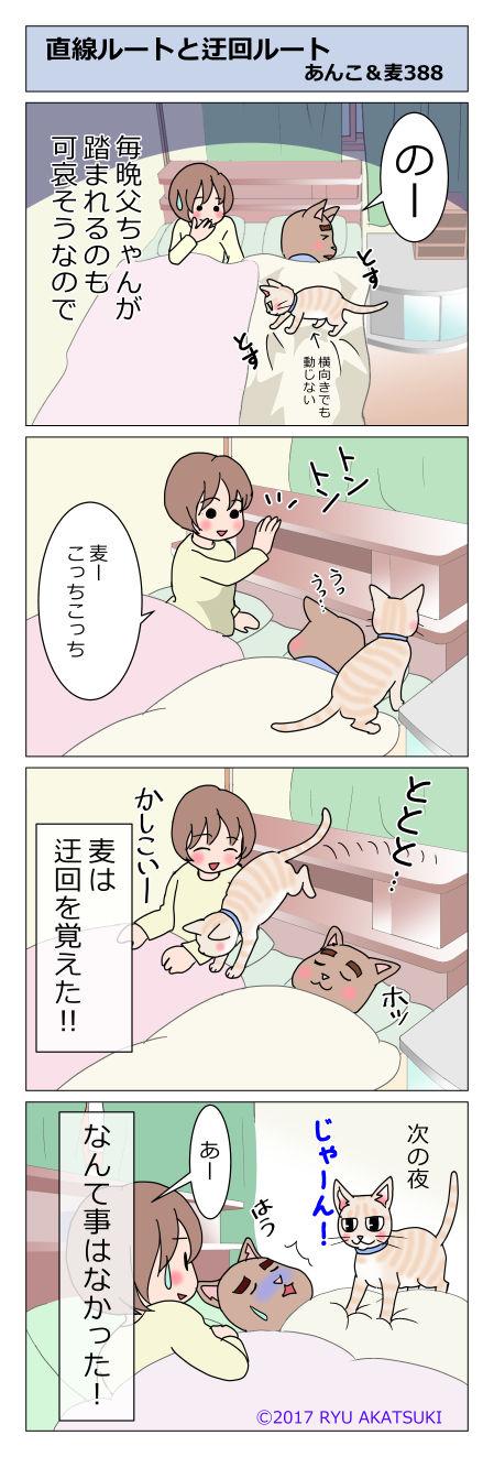 あんこ&麦STORY388