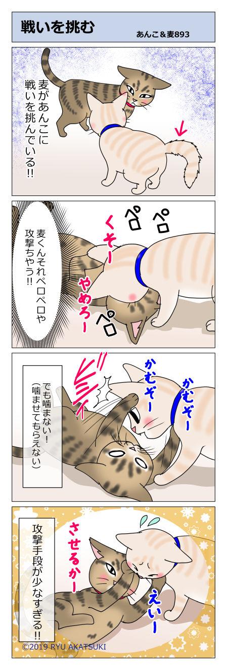 あんこ&麦STORY893