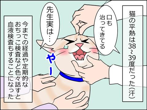 あんこ&麦kenko30c