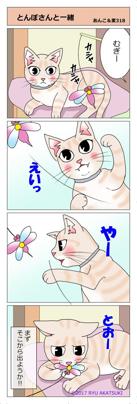 あんこ&麦STORY318